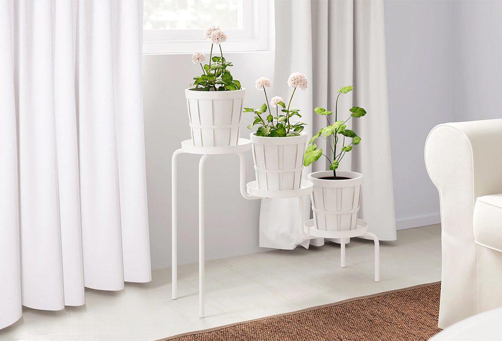 Trespoli e supporti alti per le piante