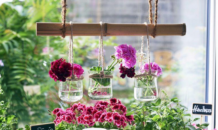 Idee per decorare casa e tavola con gerani e pelargoni