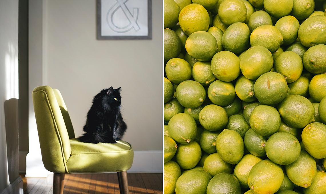 CasaFacile ACaputo giallo pantone-estate2018 poltrona lime