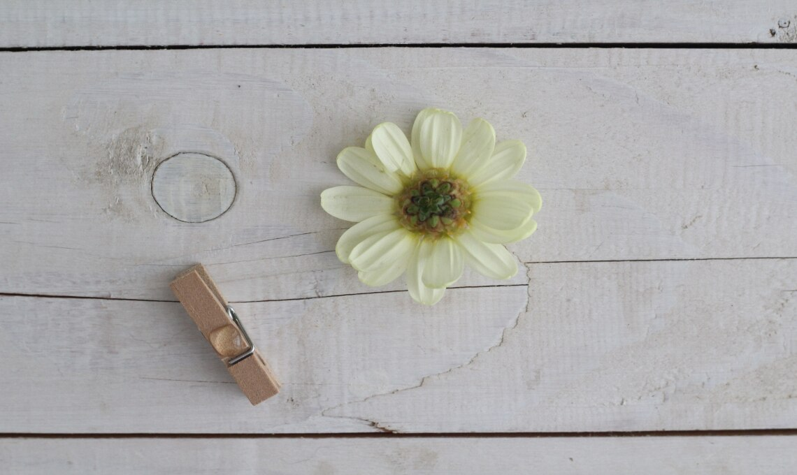 CasaFacile LAAbelli fiore tavola materiali