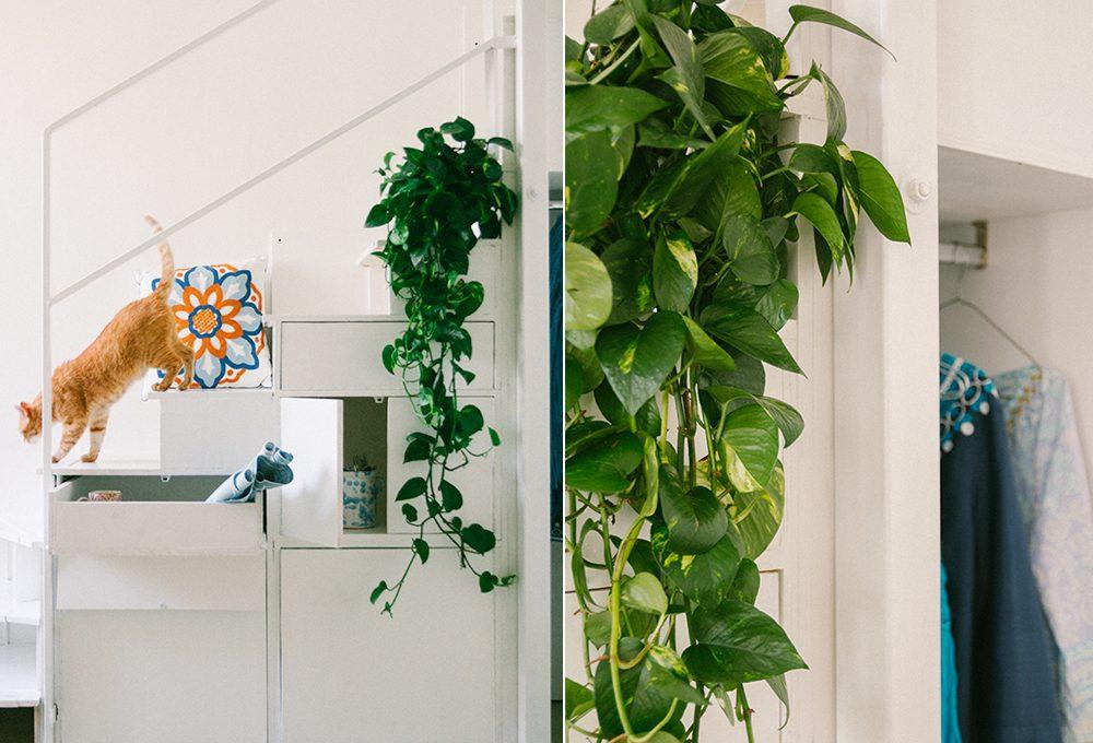 Mini case: ottimizzare gli spazi curando estetica e funzionalità