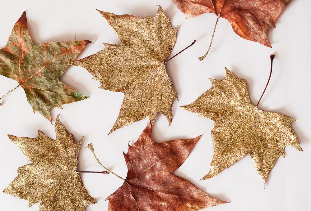 Decora le foglie autunnali con i glitter
