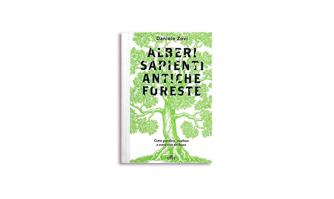 casafacile-libri-verde
