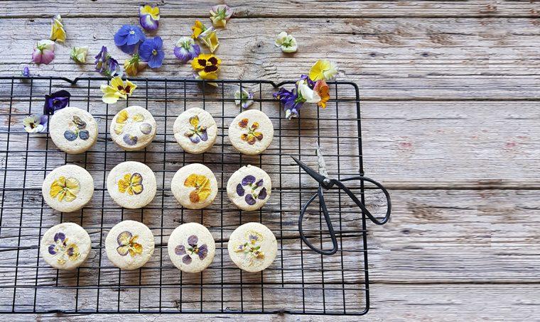 Decora i tuoi piatti con i fiori edibili