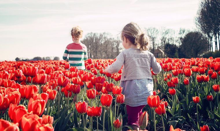 Castello di Pralormo: una giornata dedicata ai tulipani