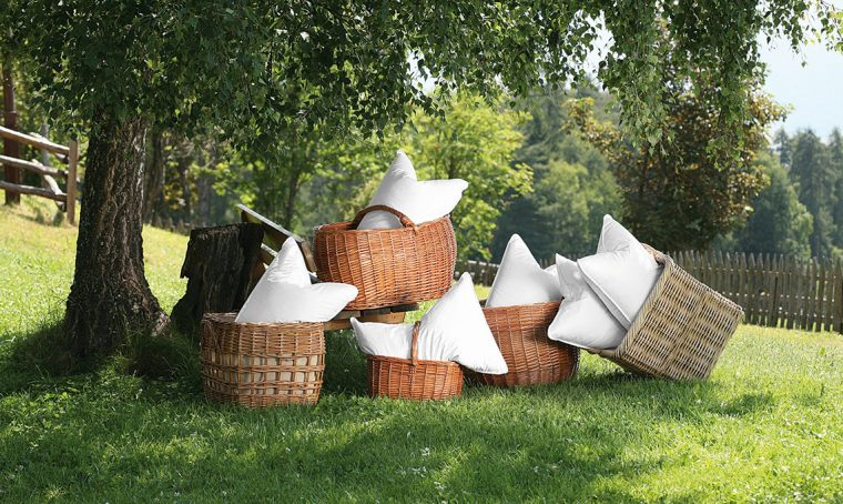 Cirmolo: il legno magico che favorisce il relax