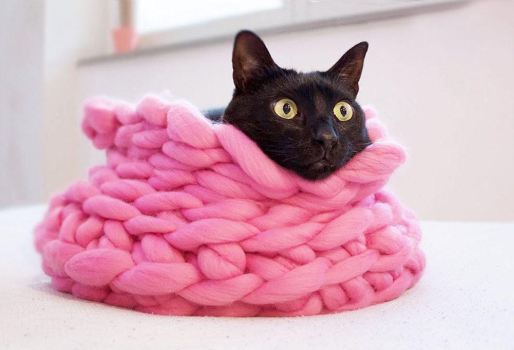 Realizzare un cuccia per i gatti in lana