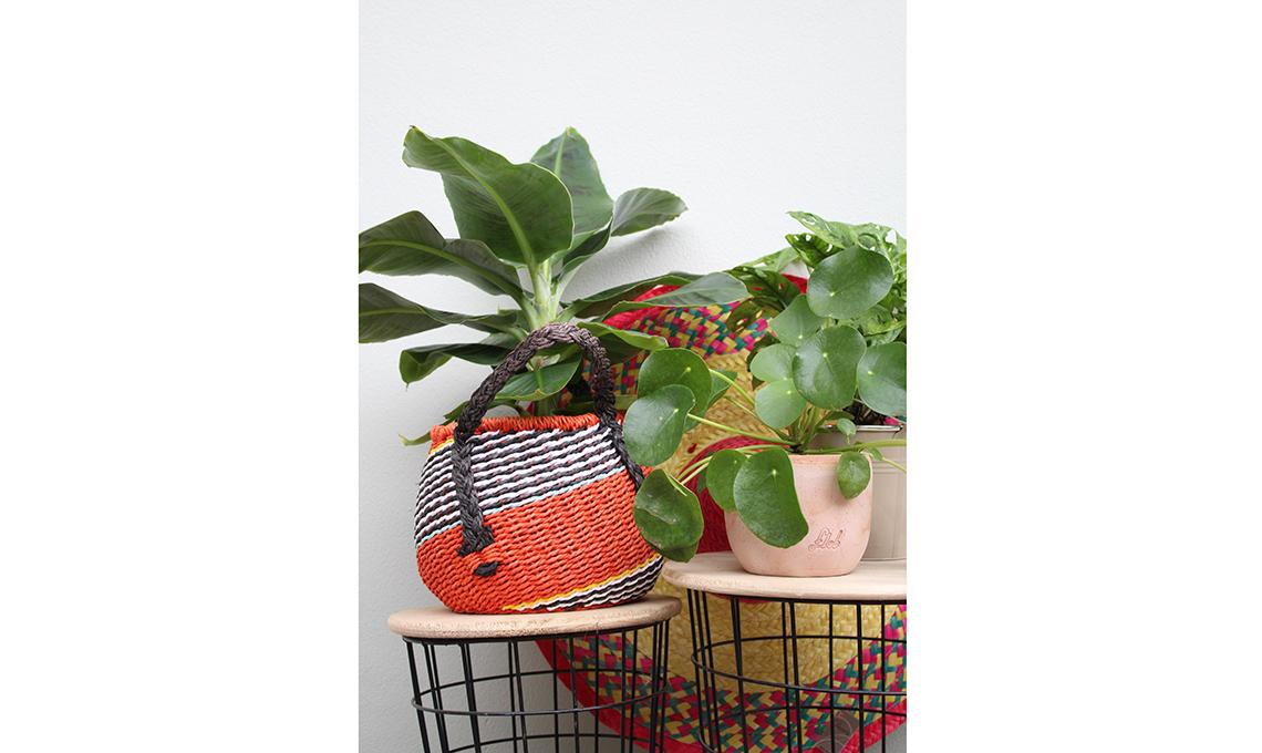 Acquistare le piante nei vasi di design - CasaFacile