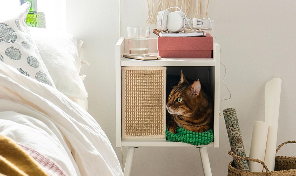 casafacile-regali-animali domestici