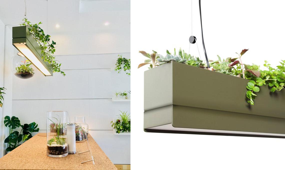 Tre soluzioni di illuminazione che portano il verde dentro casa ...