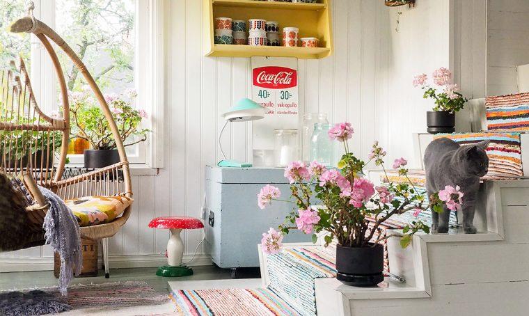 5 consigli per coltivare il pelargonio in casa