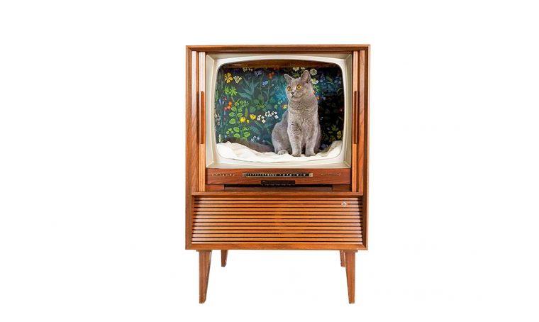 Realizzare la cuccia per il gatto nella televisione vintage