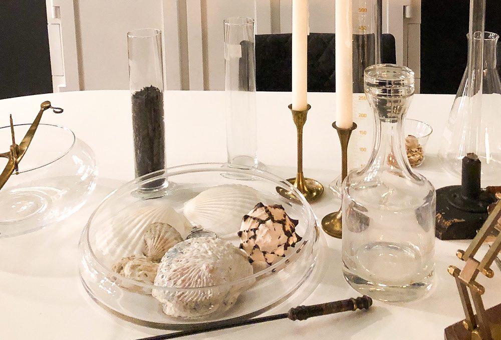 Cos'è la wunderkammer, la stanza degli oggetti 'meravigliosi'