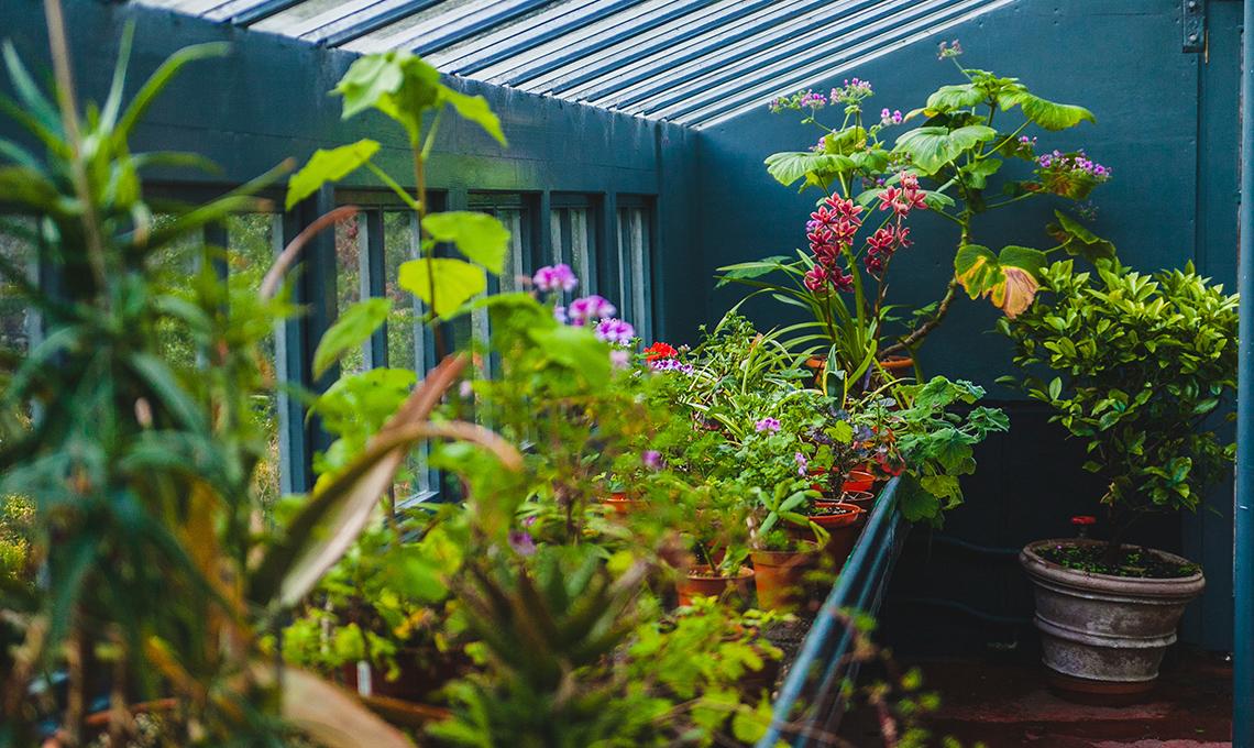 casafacile lavori di giardinaggio febbraio