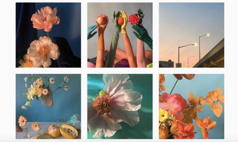10 profili Instagram per appassionati di fiori