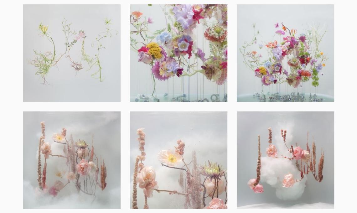 profili instagram fiori