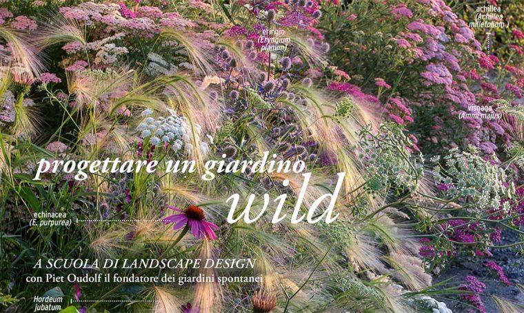 Come progettare un giardino spontaneo