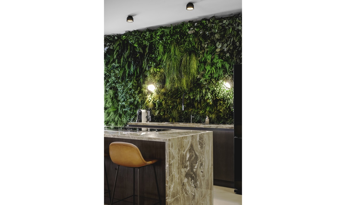 parete verde piante stabilizzate