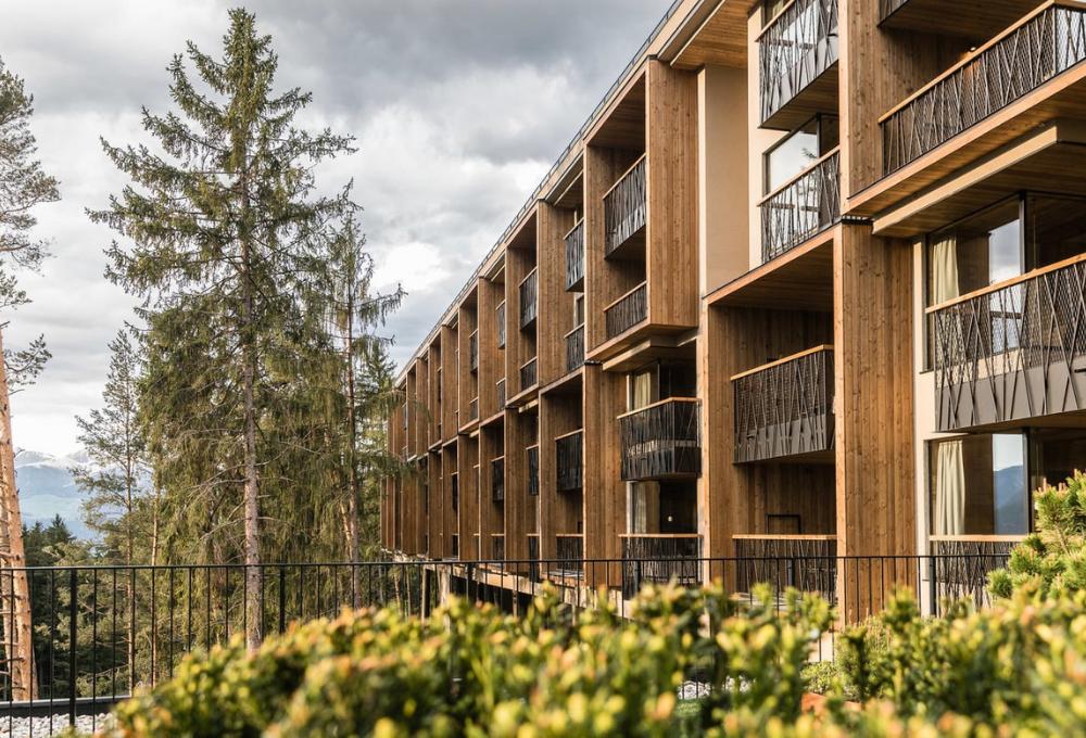 Quando il design è green: My Arbor, un hotel sugli alberi