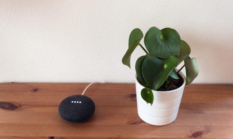 Google Home: come cambia il modo di vivere la casa