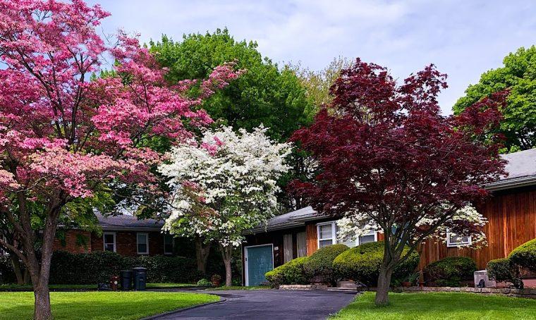 Primavera: decorare l'ingresso di casa