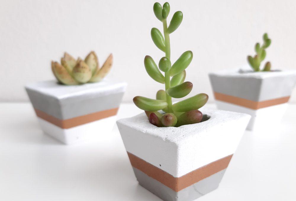 Crea un vaso in cemento in 7 facili passaggi
