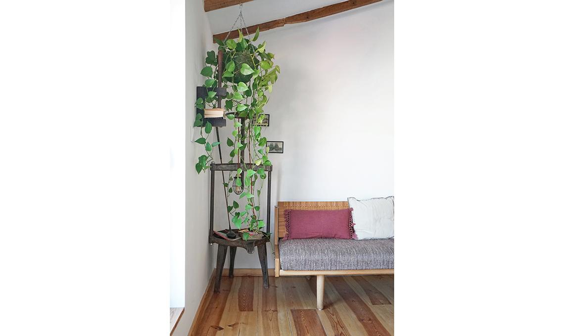 mansarda dall'anima green