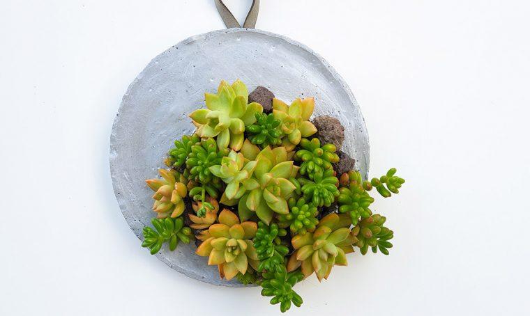 Realizza un planter per succulente in cemento da appendere
