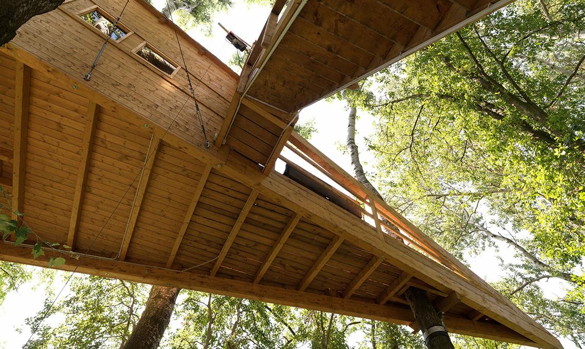 Progettare una casa studio sull albero casafacile for Progettare la casa