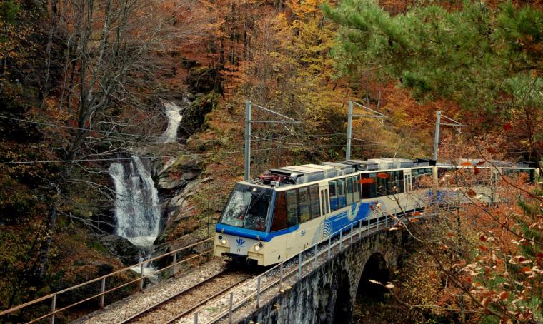 Treno del foliage: viaggio panoramico tra i colori dell'autunno
