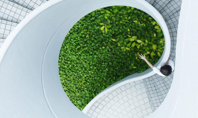 Giardinaggio: gli appuntamenti verdi di ottobre