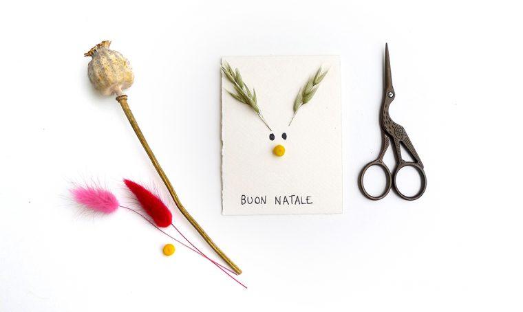 Natale: realizza i biglietti botanici