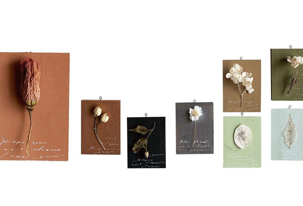 4 modi originali per esporre i fiori secchi