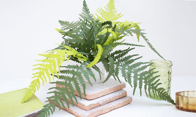Come realizzare una pianta di felce in carta