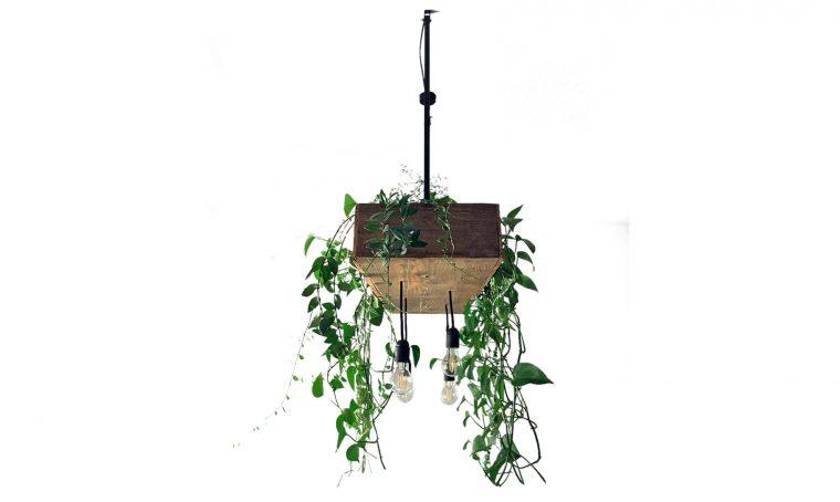 Realizza il lampadario in stile urban jungle