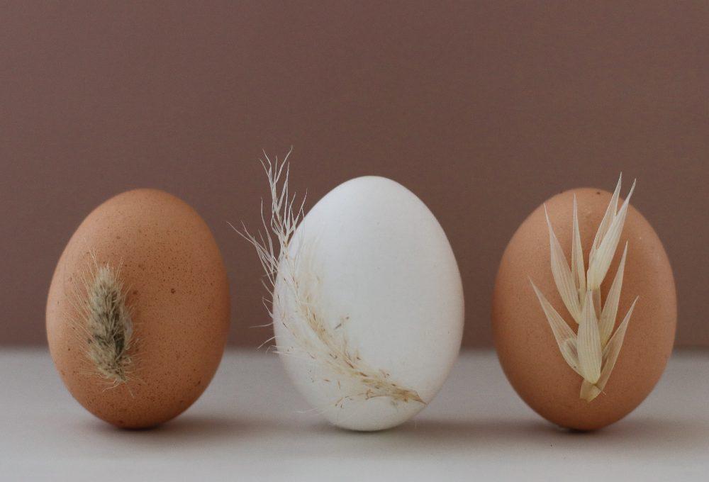 Fiori secchi per decorare le uova di Pasqua
