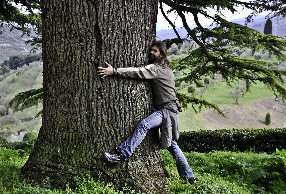 Abbracciare gli alberi fa bene alla salute