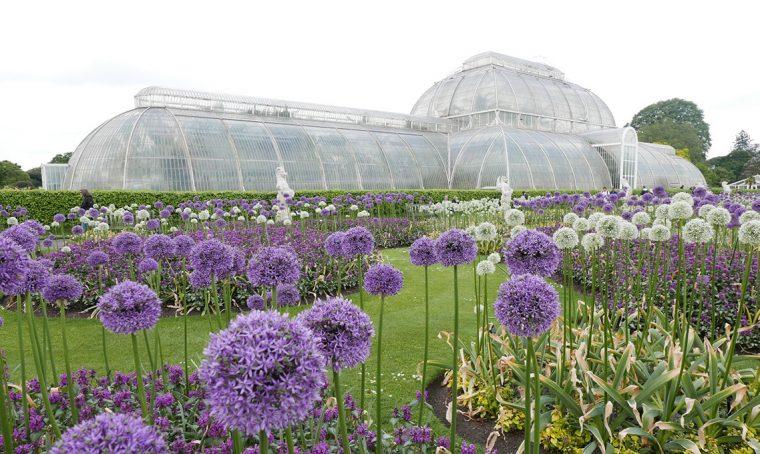 Le serre vittoriane dei Kew Gardens