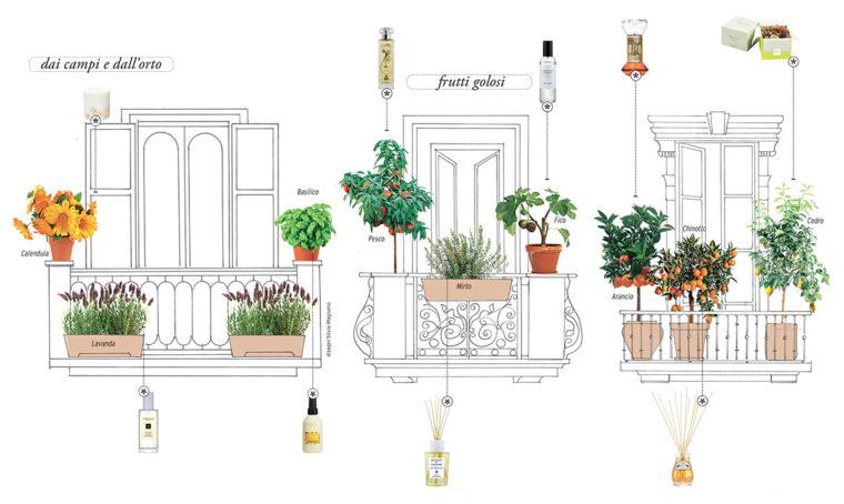 Le piante perfette per creare l'angolo verde sensoriale