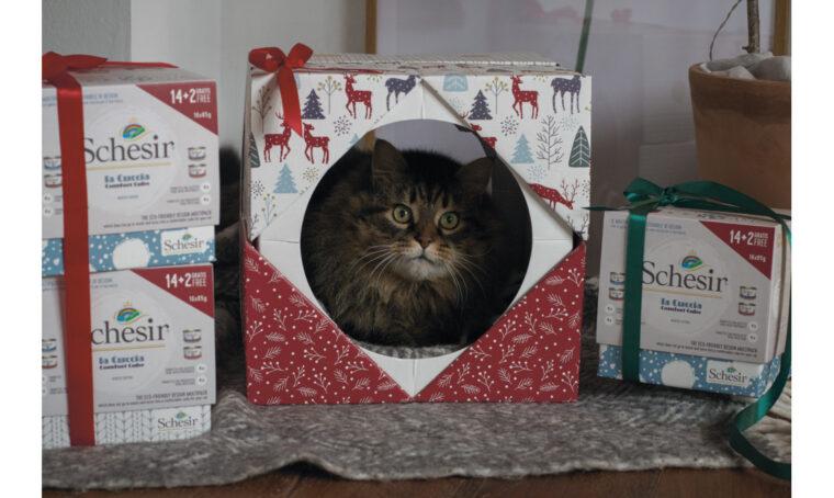 Crea una cuccia ecosostenibile e di design per il gatto con le confezioni multipack di Schesir