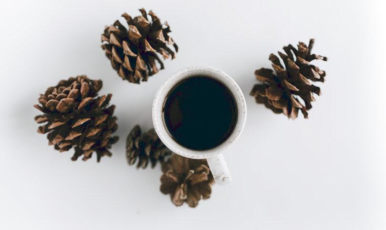 4 consigli green per la tavola invernale