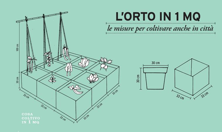 L'orto in 1 mq: le misure per coltivare anche in città