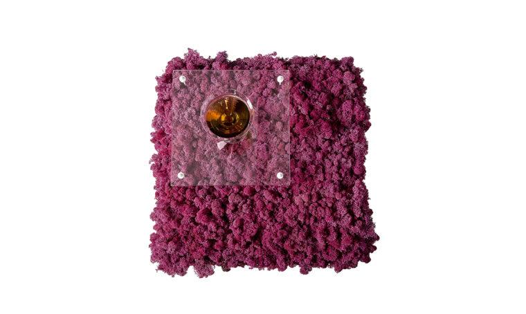 Quando la natura incontra il design: il coffee table con licheni stabilizzati
