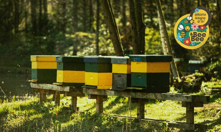 OBl a sostegno della biodiversità con la campagna sulle piante mellifere