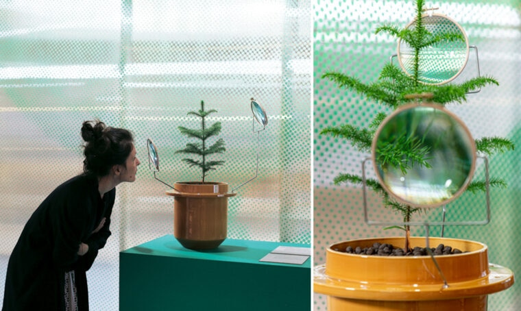 New Home: il design che parte dal mondo vegetale