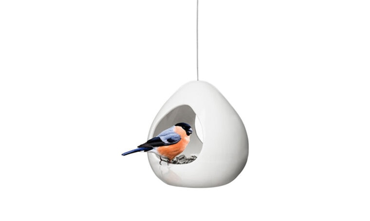 Mangiatoie per nutrire gli uccelli selvatici